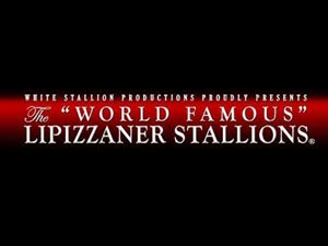 The Lipizzaner Stallions Nov...