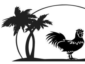 Surfside Rooster